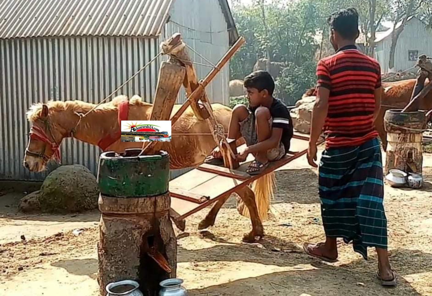নাসিরনগরে পৈত্রিক পেশা ঘানি ভাঙ্গা কাজে ব্যস্ত মফিজ মিয়া